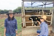 Bridging the Gender Gap in Cattle Industry